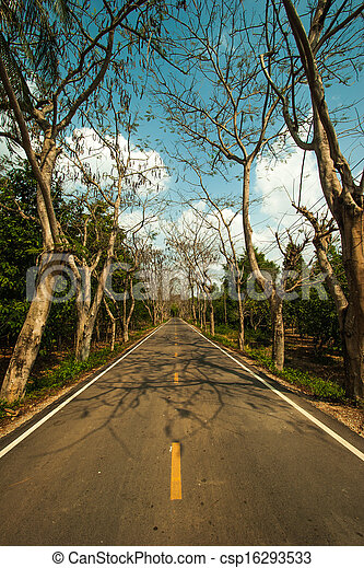 Country road with trees along - csp16293533