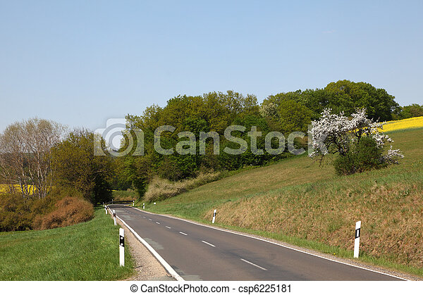 Country road with trees and meadows on the side - csp6225181