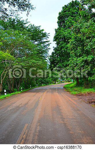 Country road with trees - csp16388170