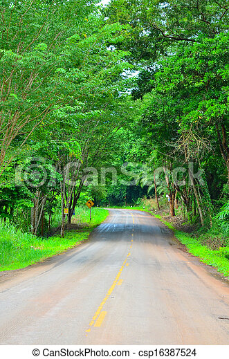 Country road with trees - csp16387524