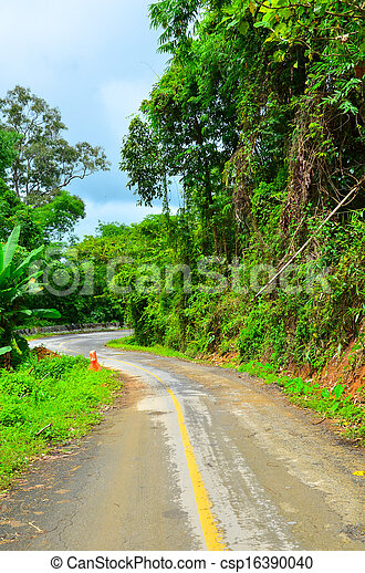 Country road with trees - csp16390040