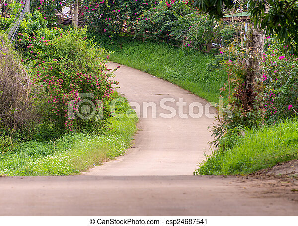 Country road with trees - csp24687541
