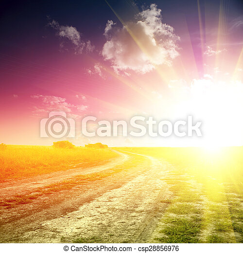 Country side road through fields with wheat  - csp28856976