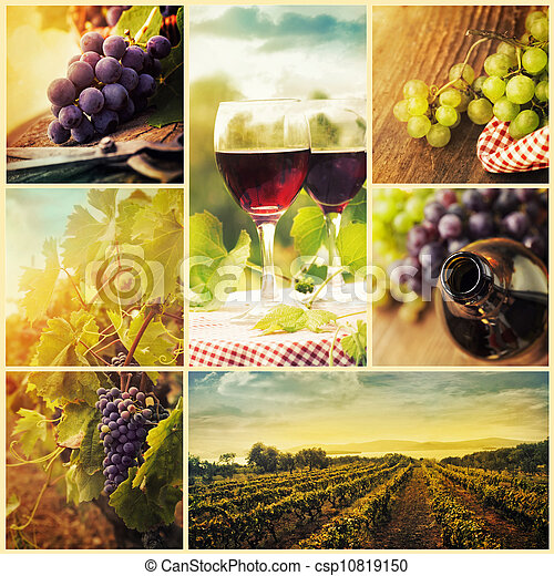 Country wine collage - csp10819150