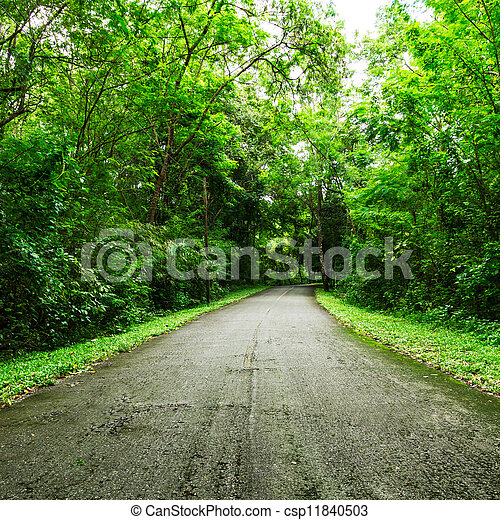 countryside road - csp11840503