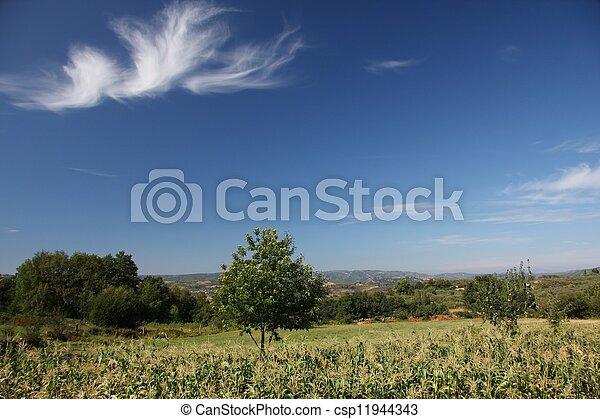 Countryside - csp11944343