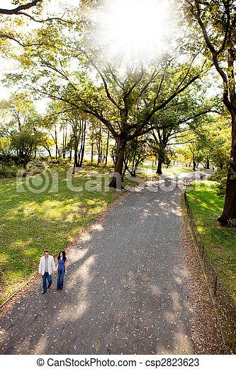 couple, parc, promenade - csp2823623