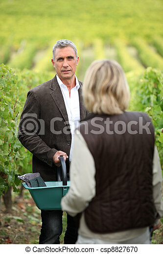 Couple picking grapes - csp8827670