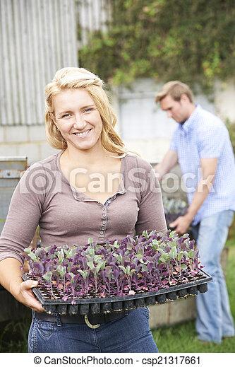 Couple Planting Seedlings On Organic Farm - csp21317661