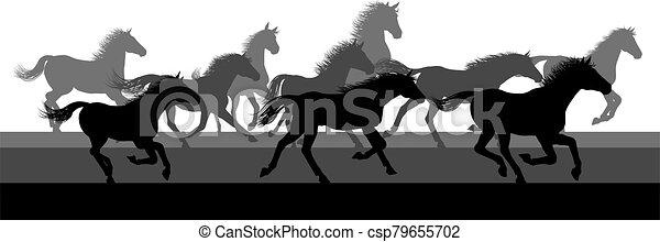 courant, silhouette, chevaux, troupeau - csp79655702