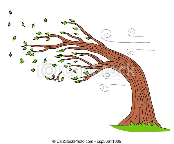 courber, souffler, arbre, jour venteux, vent - csp56611009