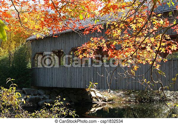 covered bridge and autumn - csp1832534