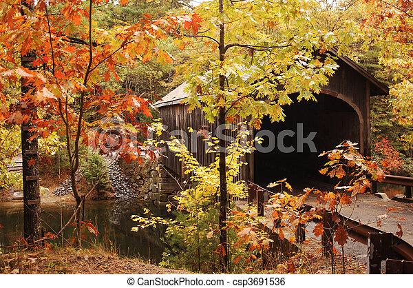 covered bridge - csp3691536