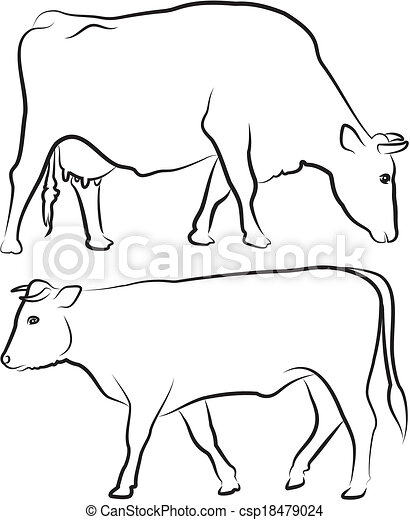 cow and bull outlines farm animals black and white cattle