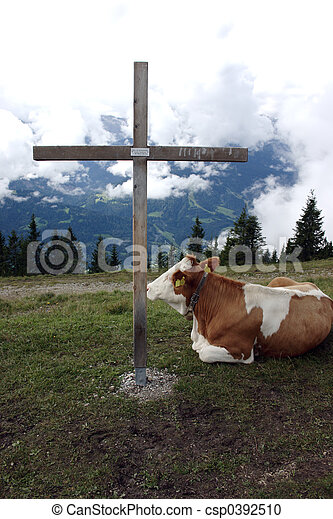 Cow and the cross 1 - csp0392510