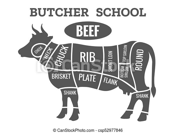 Cow butcher diagram cutting beef meat or steak cuts diagram eps cow butcher diagram csp52977846 ccuart Gallery