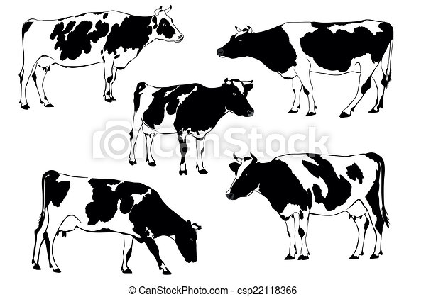 cow herd of cows clip art vector search drawings and graphics rh canstockphoto com cow clip art free cow clip art free