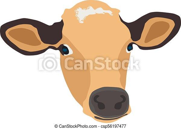cow face vector illustration - csp56197477