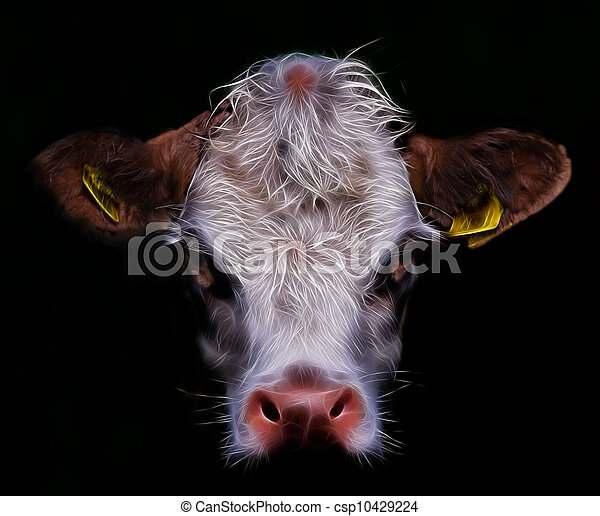 Cow Head - csp10429224