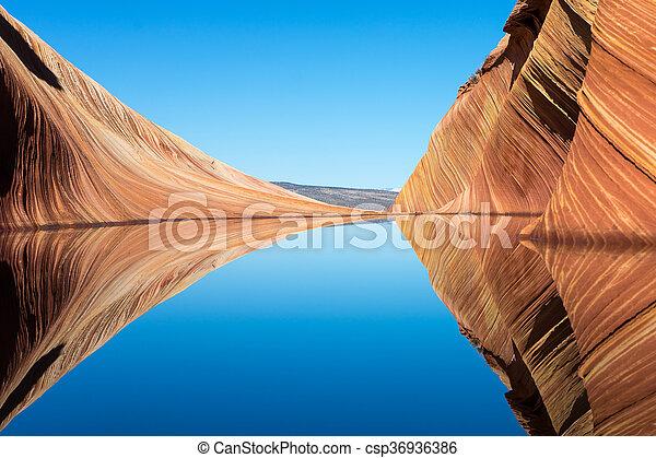 Reflejo en la ola en el trasero de coyote - csp36936386