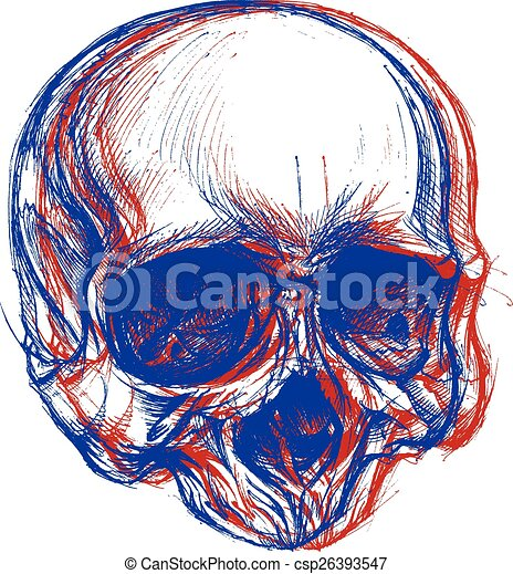 cráneo, 3d - csp26393547