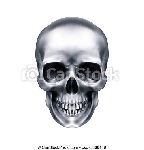 cráneo, humano - csp75388149
