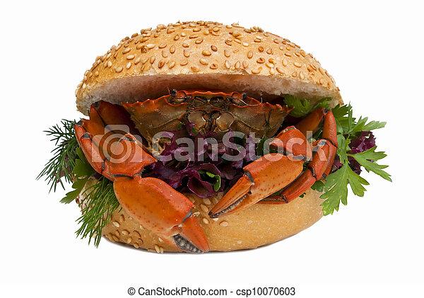 Crab - csp10070603