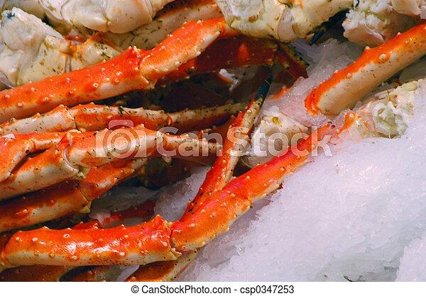 Crab - csp0347253