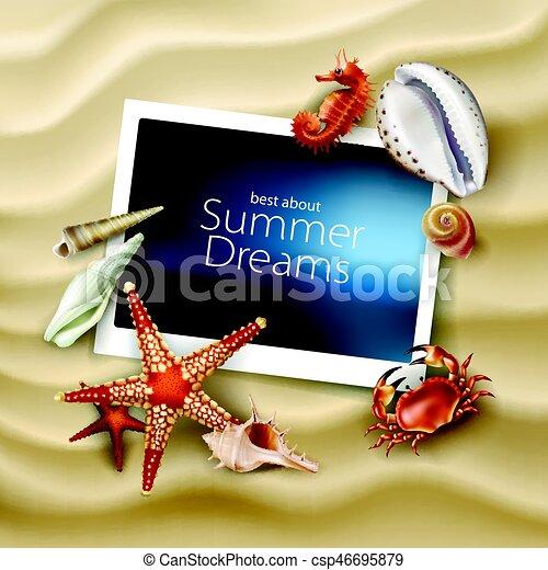 crabe, seashells, etoile mer, porte-photo, fond, cailloux, vecteur, mensonge, mer, plage, sablonneux - csp46695879