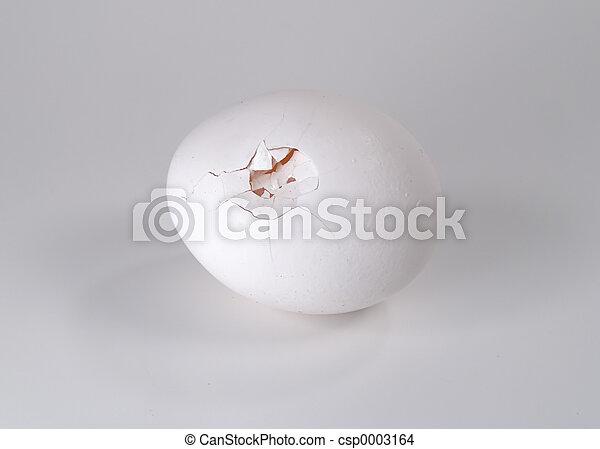 Cracked Egg - csp0003164