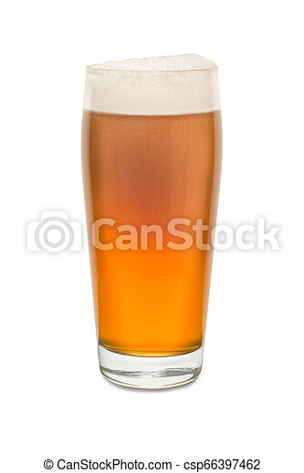 Craft Pub Glass with Beer #6 - csp66397462