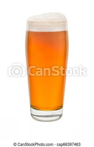 Craft Pub Glass with Beer #7 - csp66397463