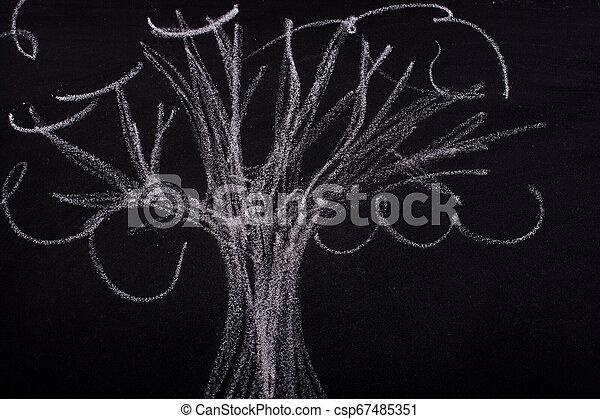 craie, tableau noir, arbre, dessin, main - csp67485351