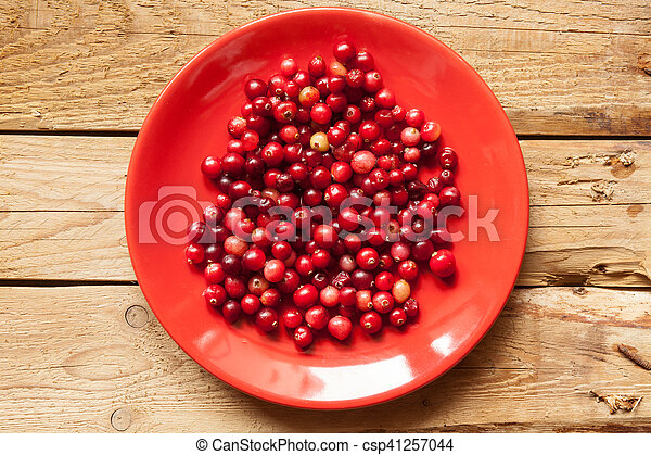 Cranberries on a plate - csp41257044