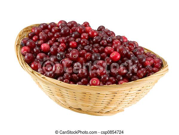 cranberries - csp0854724