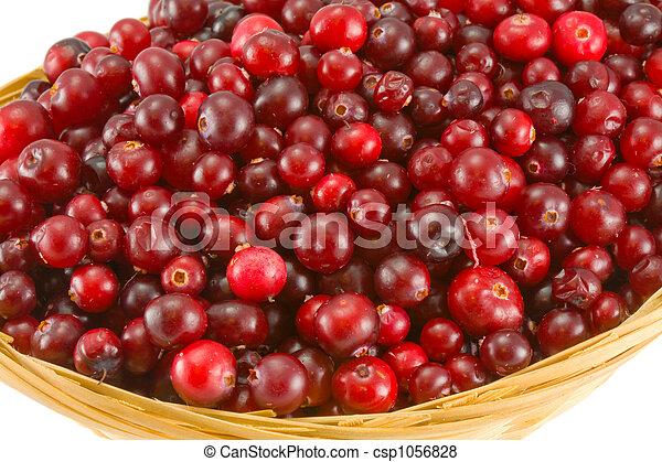 cranberry - csp1056828