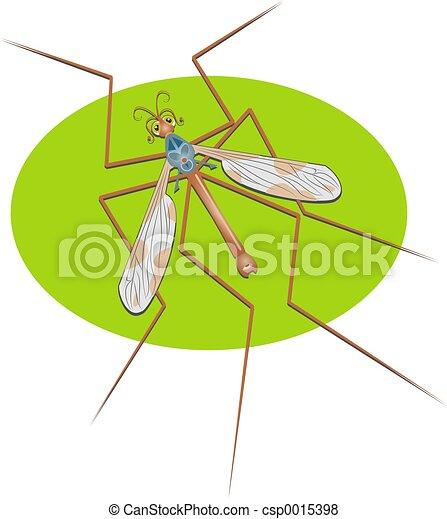 Crane Fly - csp0015398