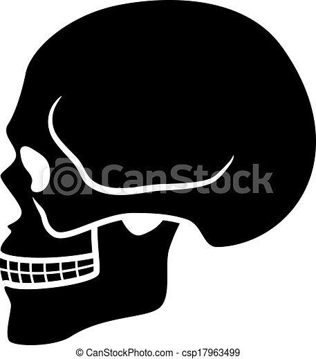 cranio, símbolo, -, vetorial, human, vista lateral - csp17963499