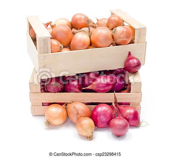Crates with onions - csp23298415