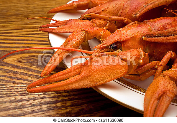 crawfish on a plate - csp11636098