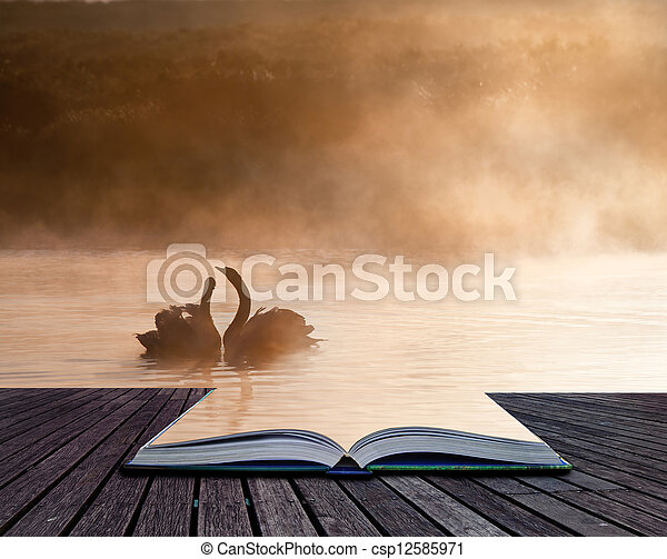Creative conept image of romantic scene of mated pair of swans in pages of book - csp12585971