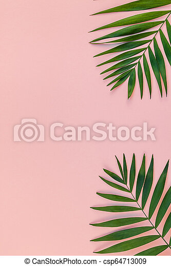 Creative Pink Background With Tropical Palm Leaves Creative Flat Lay Top View Of Green Tropical Palm Leaves Millennial Pink Canstock Palm leaf print, pink tropical art, tropical leaves, printable art, affiche scandinave, wall prints, nordic art, digital download wall decor. https www canstockphoto com creative pink background with tropical 64713009 html