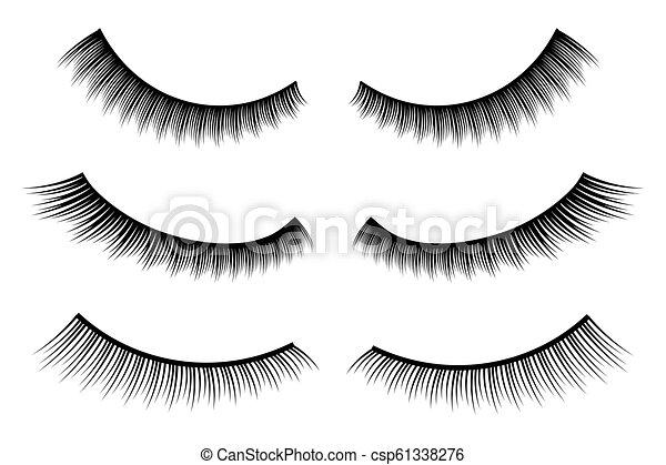 a05cb4a6fc9 Creative vector illustration of false eyelashes, female lashes, mascara  lash brush isolated on transparent background. art design thick cilia  beautiful ...