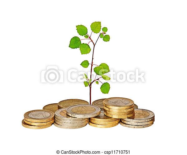 Sapling creciendo de monedas - csp11710751