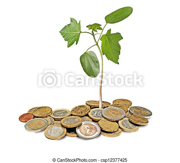Sapling creciendo de monedas - csp12377425