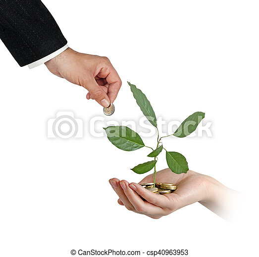 Aguacate creciendo de monedas - csp40963953