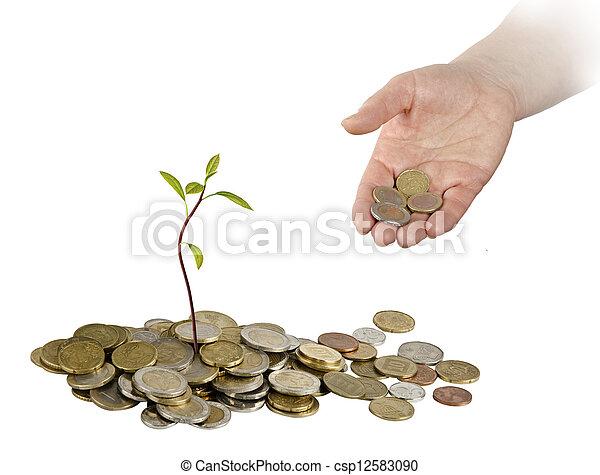 Aguacate creciendo de monedas - csp12583090