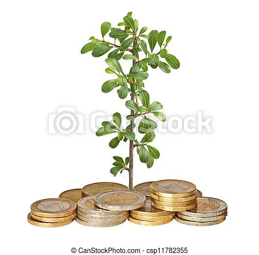 Las semillas crecen de las monedas - csp11782355