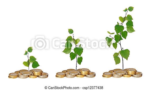 Saplings creciendo de monedas - csp12377438