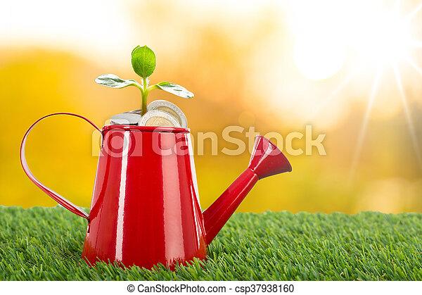 crecer, el verter, planta, lata, dinero - csp37938160